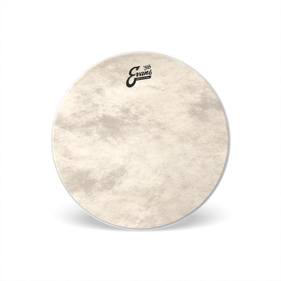 Evans 56 Calftone EQ4 Bass Drum Heads