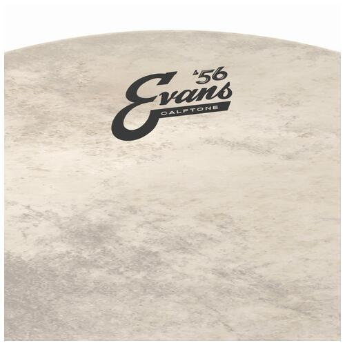 Image 4 - Evans 56 Calftone Bass Drum Heads